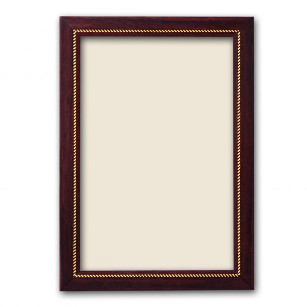 Synthetic Photo Frame 47