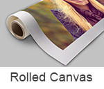 Rolled Canvas Print