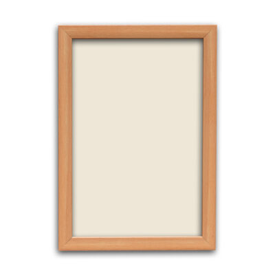 Synthetic Photo Frame 15