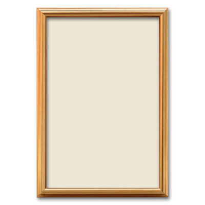Synthetic Photo Frame 33